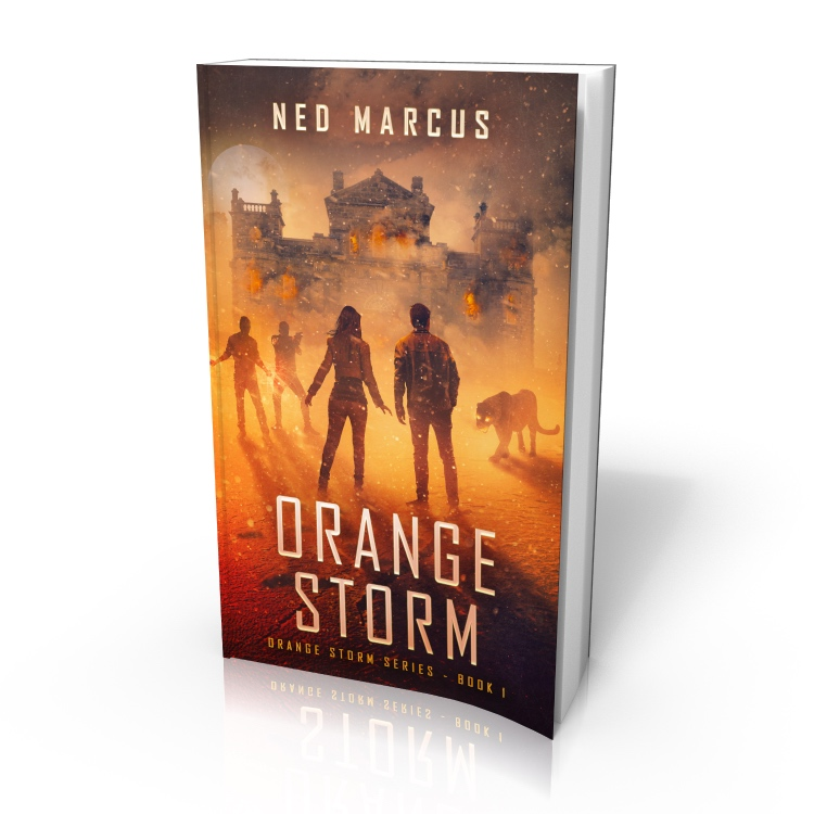 Orange Storm (cover) by Ned Marcus