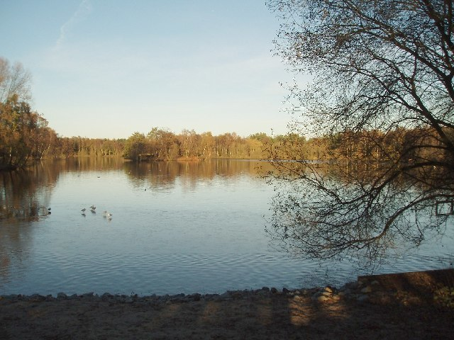 Ian Warburton/South End of Shakerley Mere