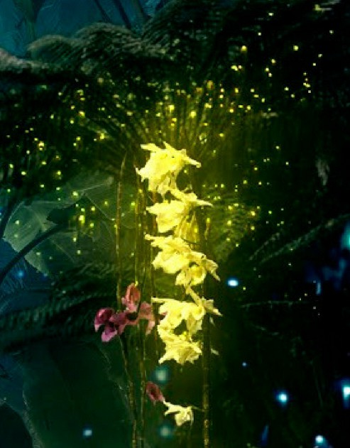 Yellow flower from Blue Prometheus